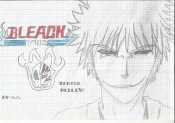 Bleach-Ichigo Hollow
